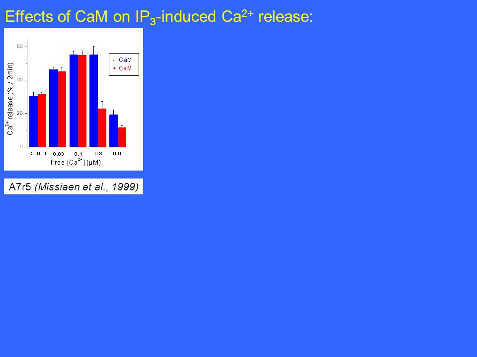 A7r5 (Missiaen et al., 1999) Effects of CaM on IP 3 -induced Ca 2+ release: