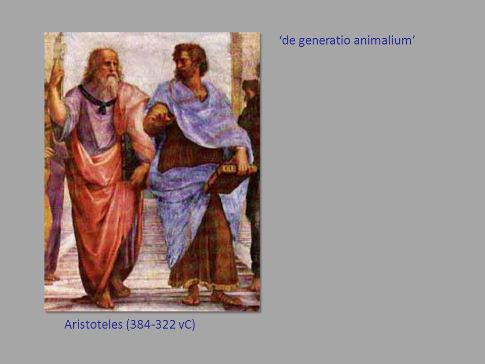 Aristoteles (384-322 vC) 'de generatio animalium'