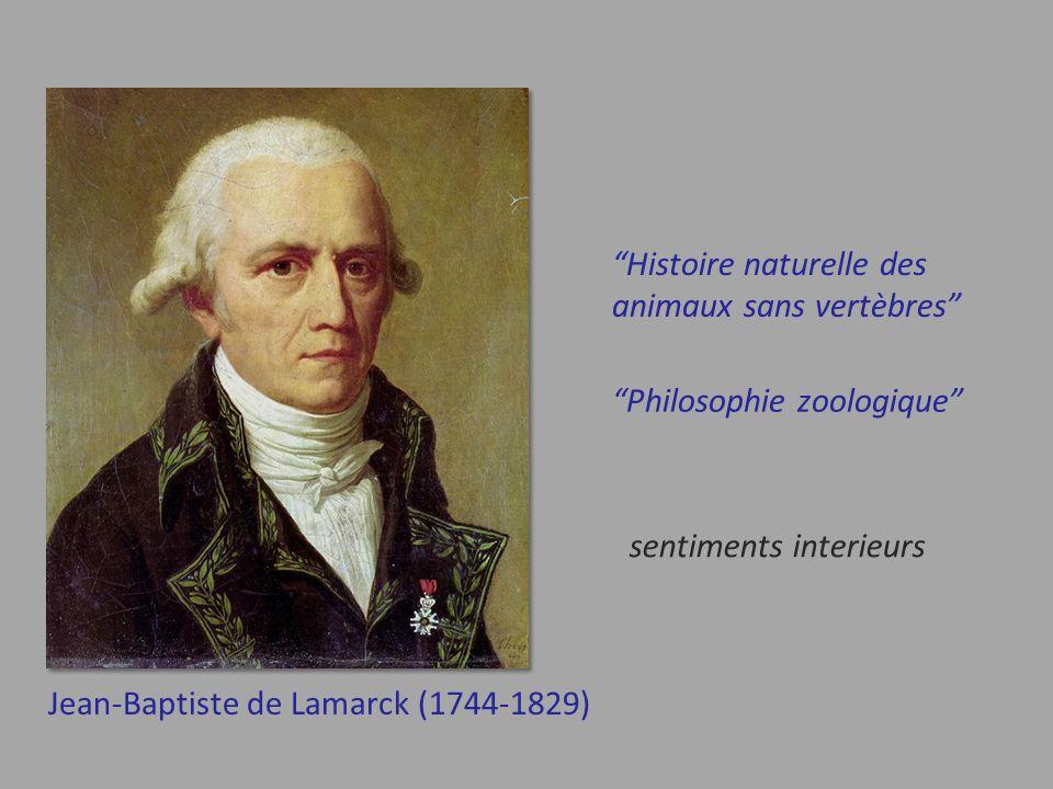 Jean-Baptiste de Lamarck (1744-1829) Histoire naturelle des animaux sans vertèbres Philosophie zoologique sentiments interieurs