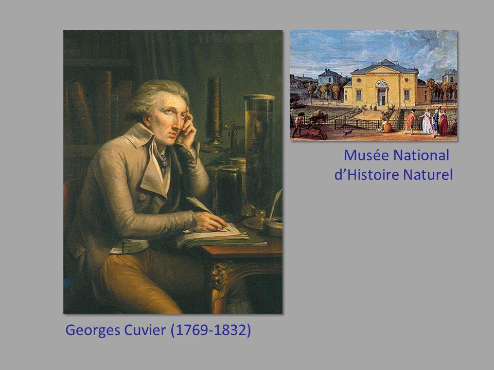 Georges Cuvier (1769-1832) Musée National d'Histoire Naturel