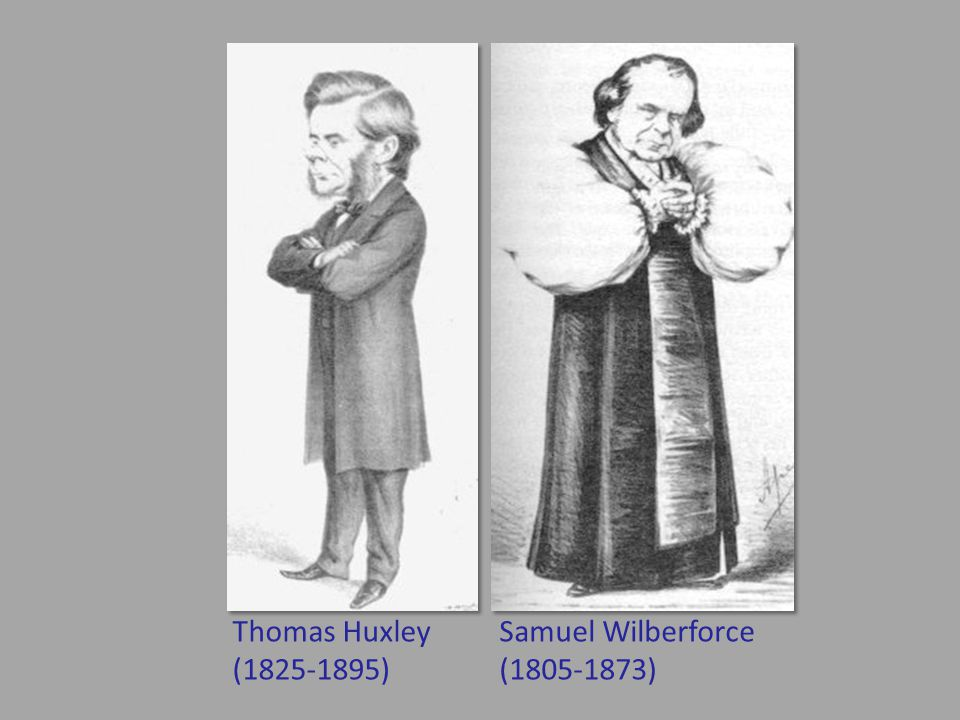 Samuel Wilberforce (1805-1873) Thomas Huxley (1825-1895)