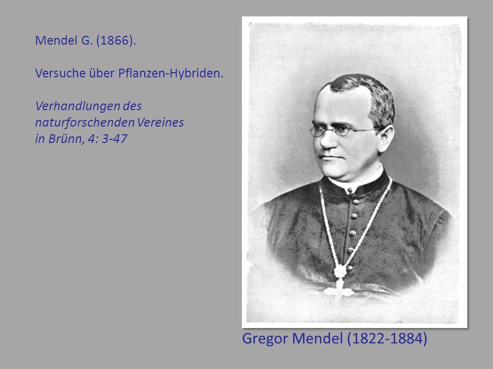 Gregor Mendel (1822-1884) Mendel G.(1866). Versuche über Pflanzen-Hybriden.