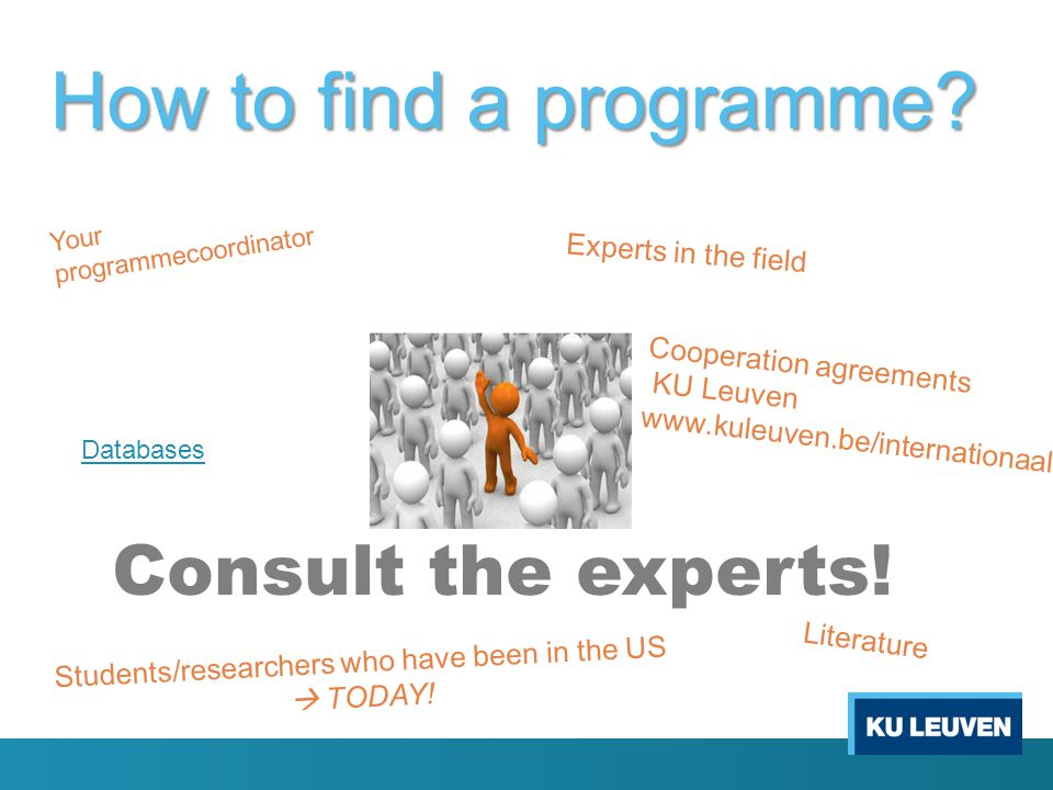 How to find a programme. Consult the experts.