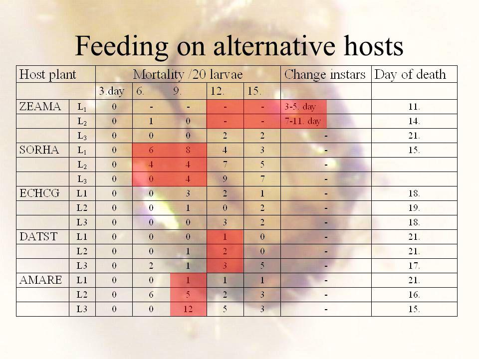 Feeding on alternative hosts