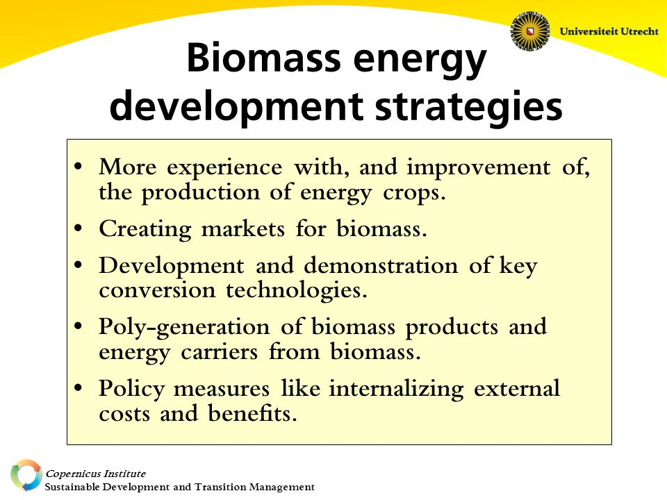 Copernicus Institute Sustainable Development and Transition Management Biomass energy development strategies More experience with, and improvement of, the production of energy crops.