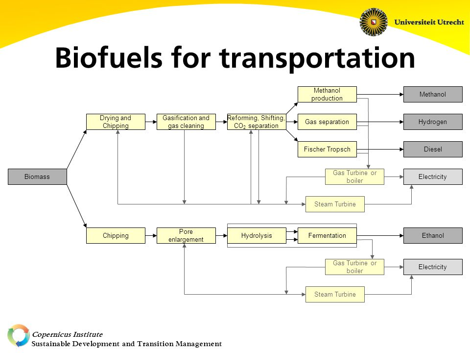 Copernicus Institute Sustainable Development and Transition Management Gasification and gas cleaning Reforming, Shifting, CO 2 separation Methanol production Fischer Tropsch Gas separation Pore enlargement Ethanol Drying and Chipping Chipping Gas Turbine or boiler Steam Turbine BiomassElectricity Gas Turbine or boiler Steam Turbine Electricity Methanol Diesel Hydrogen HydrolysisFermentation Biofuels for transportation