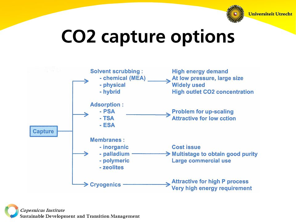 Copernicus Institute Sustainable Development and Transition Management CO2 capture options