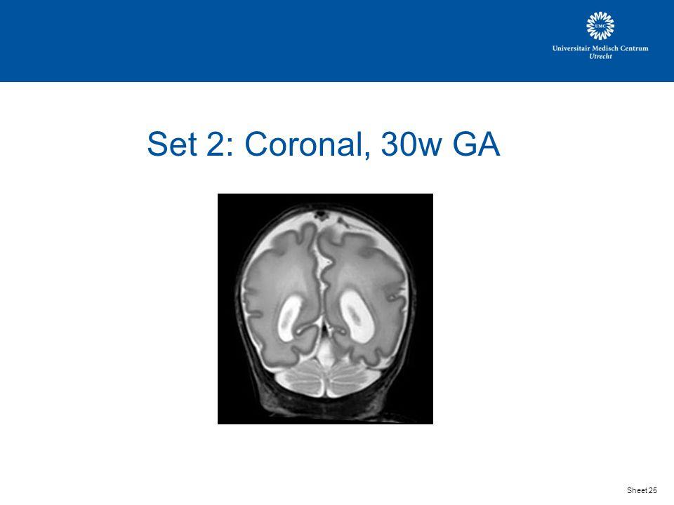 Set 2: Coronal, 30w GA Sheet 25