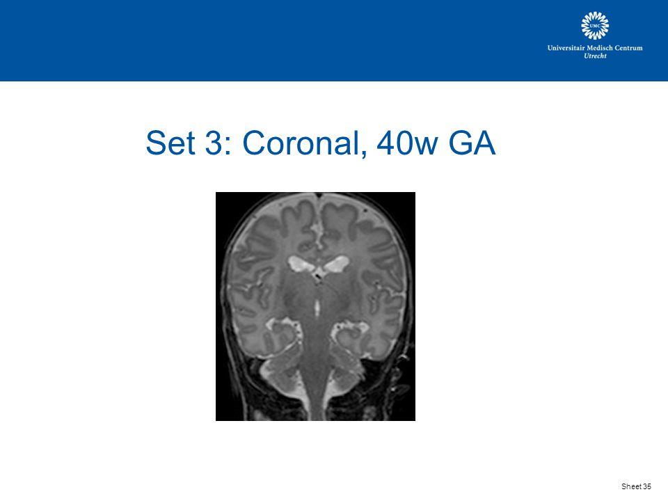 Set 3: Coronal, 40w GA Sheet 35