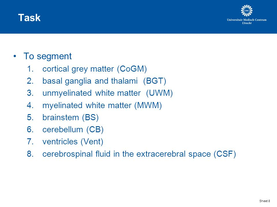 Task To segment 1.cortical grey matter (CoGM) 2.basal ganglia and thalami (BGT) 3.unmyelinated white matter (UWM) 4.myelinated white matter (MWM) 5.brainstem (BS) 6.cerebellum (CB) 7.ventricles (Vent) 8.cerebrospinal fluid in the extracerebral space (CSF) Sheet 8