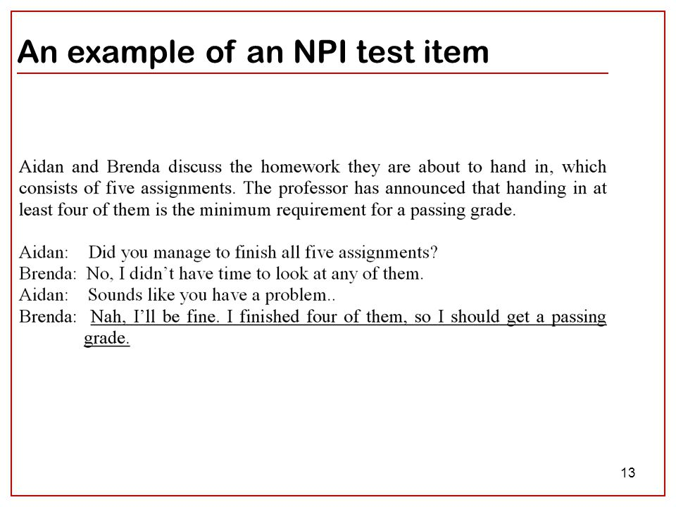 13 An example of an NPI test item