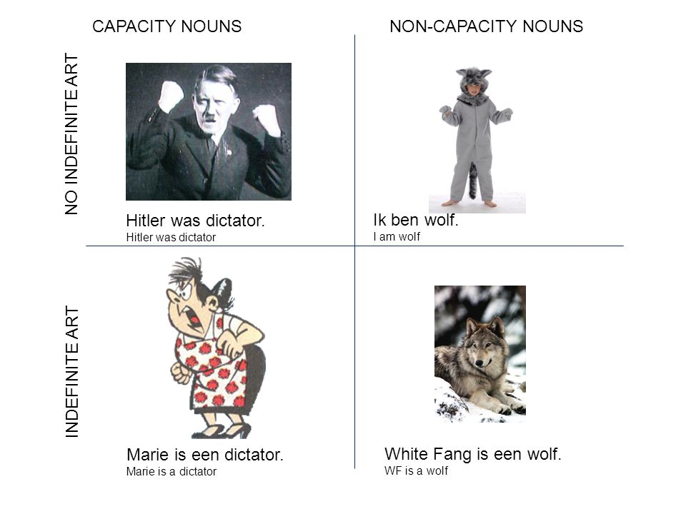 CAPACITY NOUNSNON-CAPACITY NOUNS NO INDEFINITE ART INDEFINITE ART Hitler was dictator.