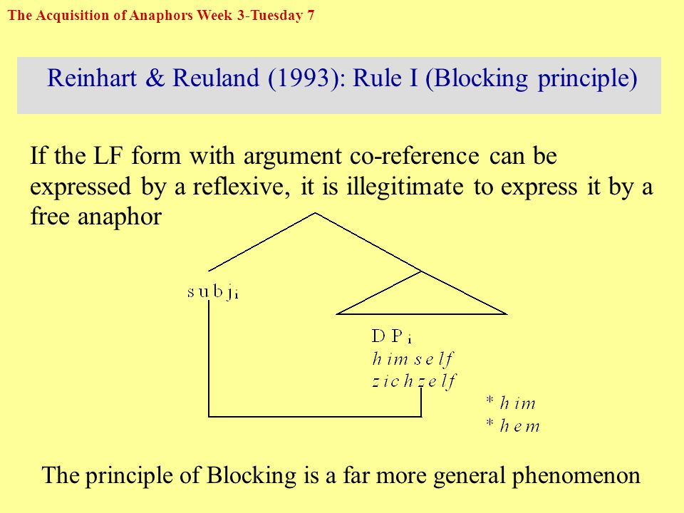 Reinhart & Reuland (1993): Rule I (Blocking principle) If the LF form with argument co-reference can be expressed by a reflexive, it is illegitimate to express it by a free anaphor The principle of Blocking is a far more general phenomenon The Acquisition of Anaphors Week 3-Tuesday 7