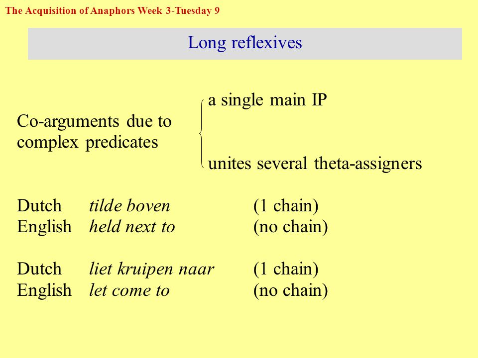 Long reflexives Example 1: Small clause *herself Eve i held a snake next to her i no predicative chain Eva i tilde de slang boven zich i uit  -role predicative chain, no  -role opposition (Eve lifted the snake above zich up) The Acquisition of Anaphors Week 3-Tuesday 10