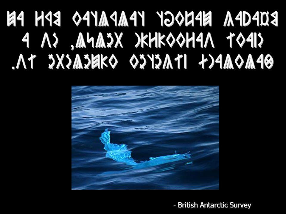 - British Antarctic Survey