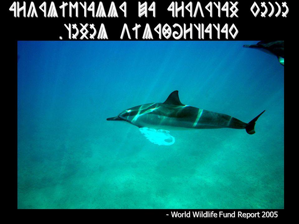 - World Wildlife Fund Report 2005