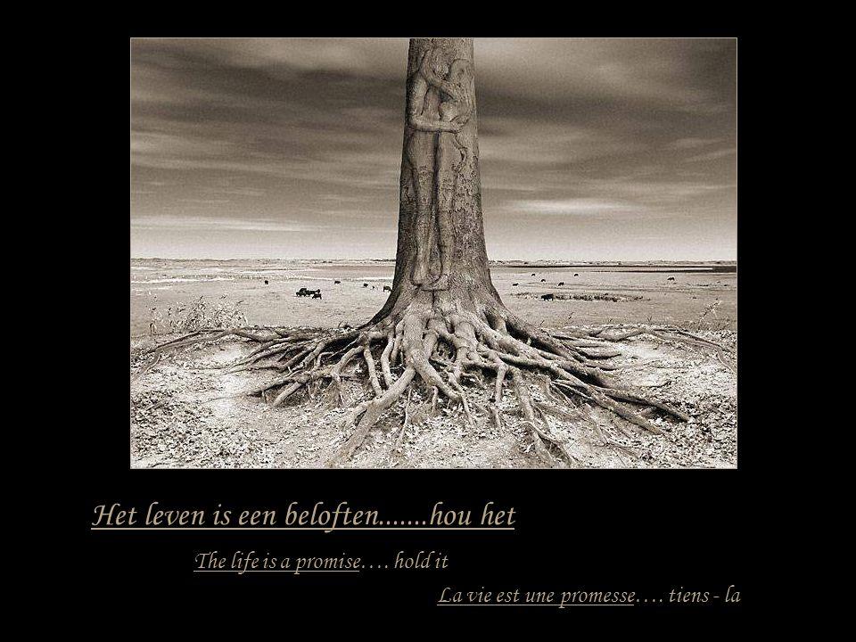 Het leven is een reis....maak het mee tot het einde La vie est un voyage.....