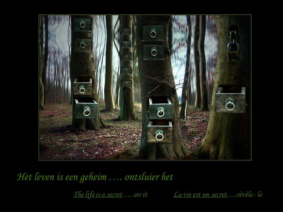 Het leven is een spel......neem er deel aan La vie est un jeu….