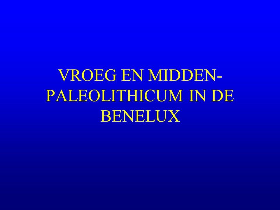 Indeling u Vroeg-Paleolithicum (1 milj-300.000) –archaïsch Paleolithicum (pebble tool; industrie à galets aménagés) –Abbeviliaan –Clactoniaan –Acheuleaan (vroege en midden fase) u Midden-Paleolithicum(300.000-40/35.000) –Acheuleaan (late fase) –Mousteriaan