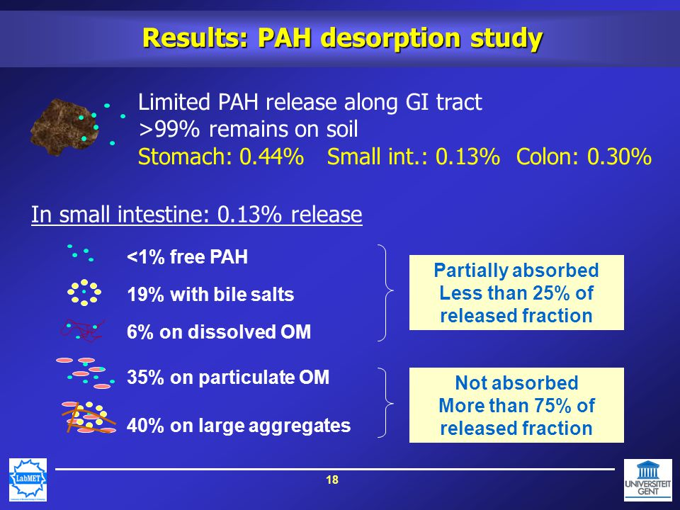 18 Results: PAH desorption study <1% free PAH 19% with bile salts 6% on dissolved OM 35% on particulate OM 40% on large aggregates Partially absorbed Less than 25% of released fraction Not absorbed More than 75% of released fraction Limited PAH release along GI tract >99% remains on soil Stomach: 0.44% Small int.: 0.13% Colon: 0.30% In small intestine: 0.13% release