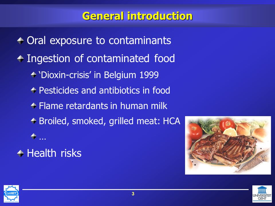 3 General introduction Oral exposure to contaminants Ingestion of contaminated food 'Dioxin-crisis' in Belgium 1999 Pesticides and antibiotics in food Flame retardants in human milk Broiled, smoked, grilled meat: HCA … Health risks