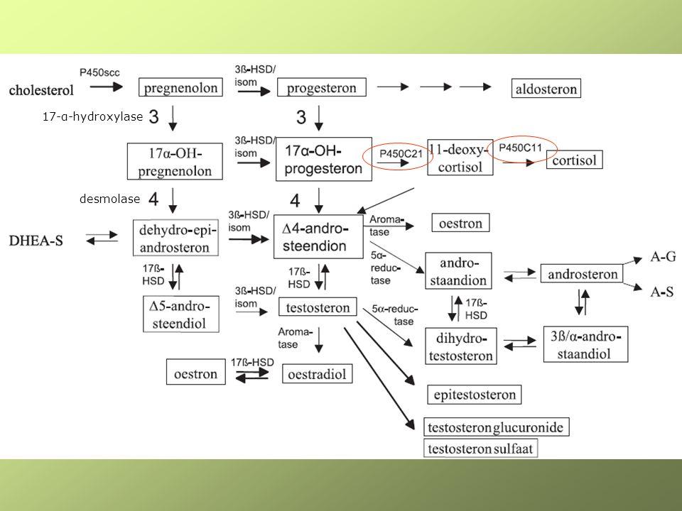 Androgen excess Hyperandrogenism (virilisation) –Acne –Hirsutism –alopecia Cycle disturbances –PCOS