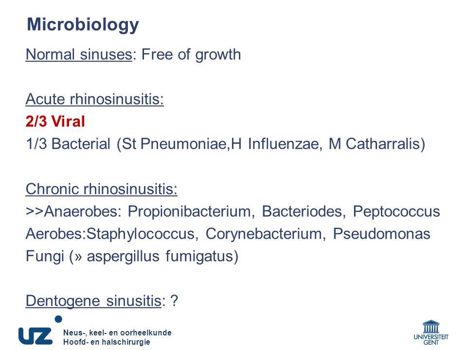 Neus-, keel- en oorheelkunde Hoofd- en halschirurgie Neus-, keel- en oorheelkunde Hoofd- en halschirurgie Microbiology Normal sinuses: Free of growth Acute rhinosinusitis: 2/3 Viral 1/3 Bacterial (St Pneumoniae,H Influenzae, M Catharralis) Chronic rhinosinusitis: >>Anaerobes: Propionibacterium, Bacteriodes, Peptococcus Aerobes:Staphylococcus, Corynebacterium, Pseudomonas Fungi (» aspergillus fumigatus) Dentogene sinusitis: ?