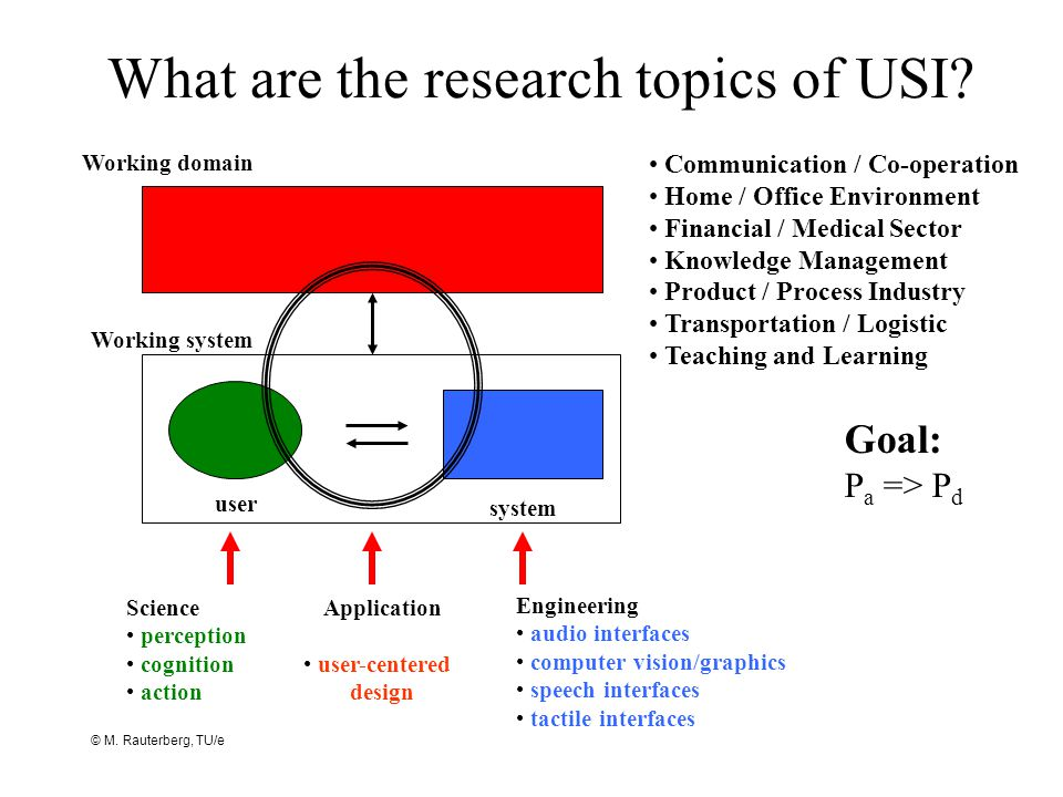 What are the research topics of USI.