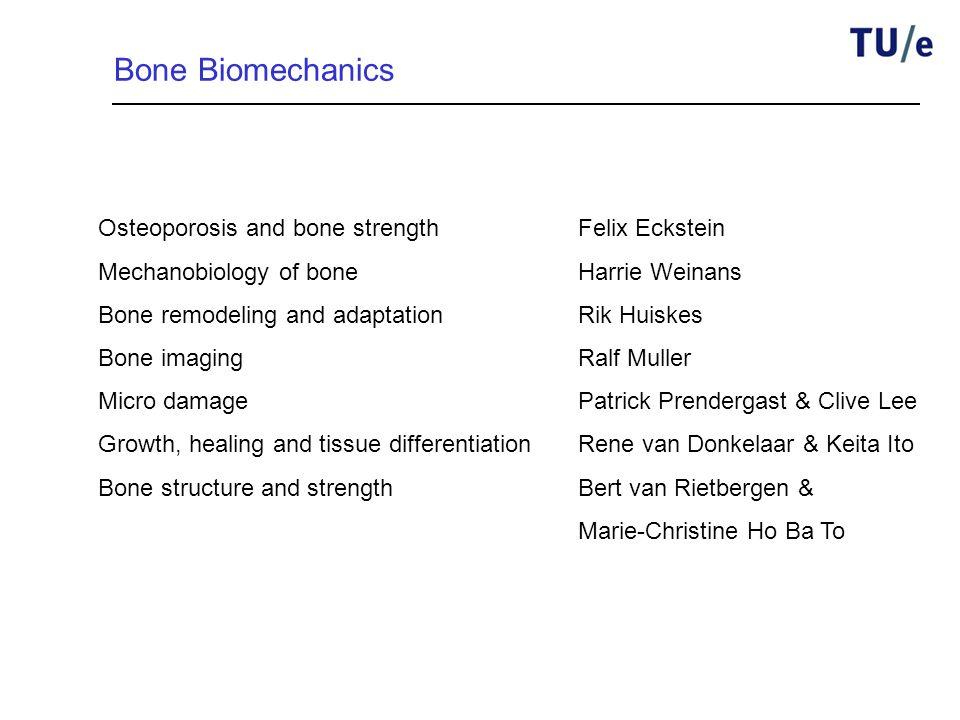 Bone Biomechanics Osteoporosis and bone strengthFelix Eckstein Mechanobiology of boneHarrie Weinans Bone remodeling and adaptationRik Huiskes Bone ima