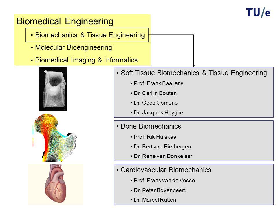 Biomedical Engineering Biomechanics & Tissue Engineering Molecular Bioengineering Biomedical Imaging & Informatics Cardiovascular Biomechanics Prof. F