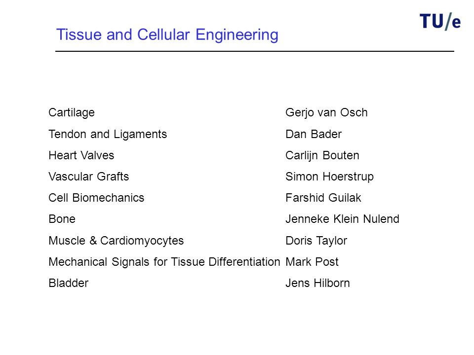 Tissue and Cellular Engineering Cartilage Gerjo van Osch Tendon and LigamentsDan Bader Heart ValvesCarlijn Bouten Vascular GraftsSimon Hoerstrup Cell