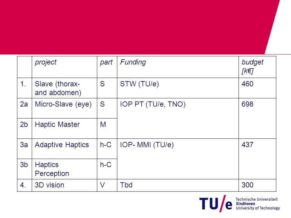 projectpartFundingbudget [k€] 1.Slave (thorax- and abdomen) SSTW (TU/e)460 2aMicro-Slave (eye)SIOP PT (TU/e, TNO)698 2bHaptic MasterM 3aAdaptive Hapticsh-CIOP- MMI (TU/e)437 3bHaptics Perception h-C 4.3D visionVTbd300