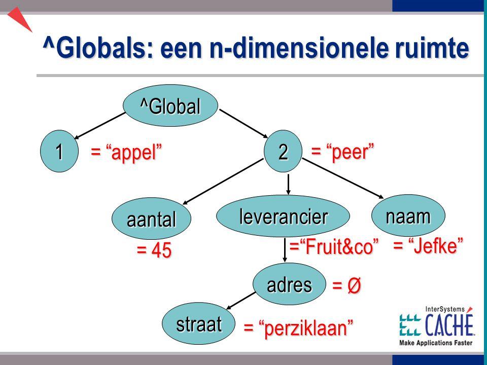 ^Globals: een n-dimensionele ruimte ^Global naam adres aantal leverancier 1 2 straat = appel = peer = 45 = Fruit&co = Jefke = Ø = perziklaan