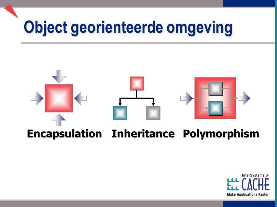 Object georienteerde omgeving PolymorphismEncapsulationInheritance
