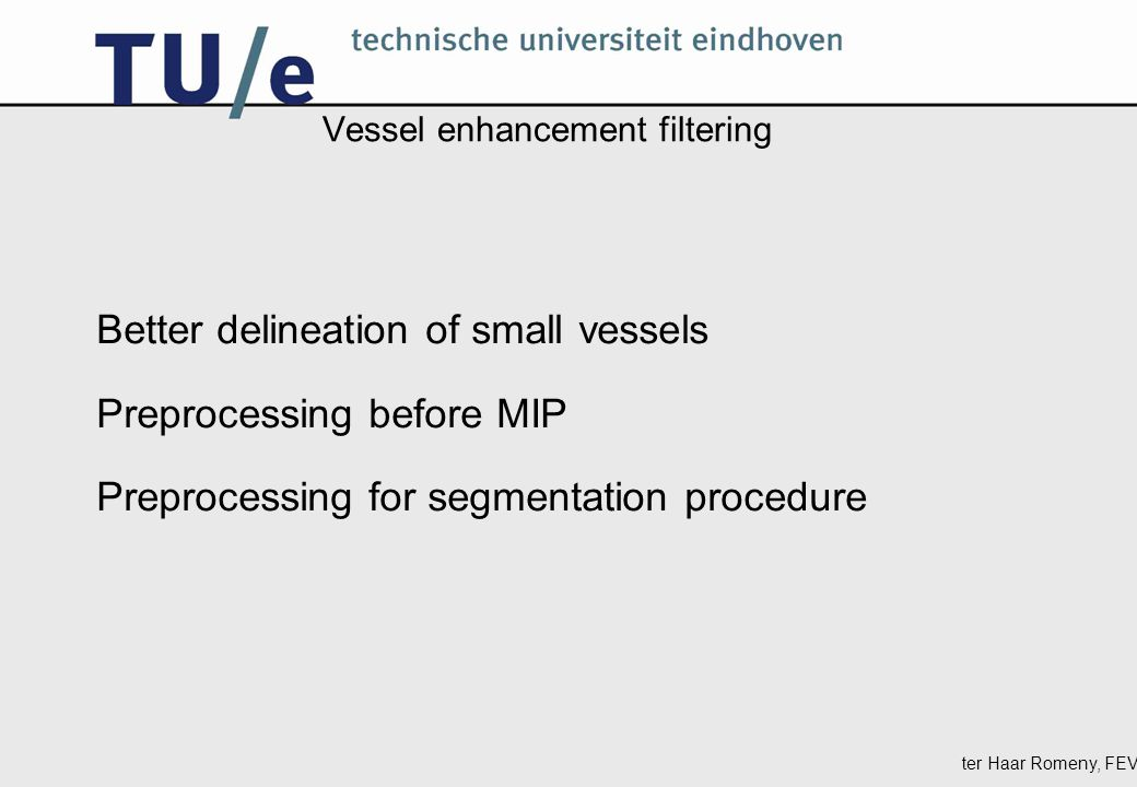 ter Haar Romeny, FEV Vessel enhancement filtering Better delineation of small vessels Preprocessing before MIP Preprocessing for segmentation procedure