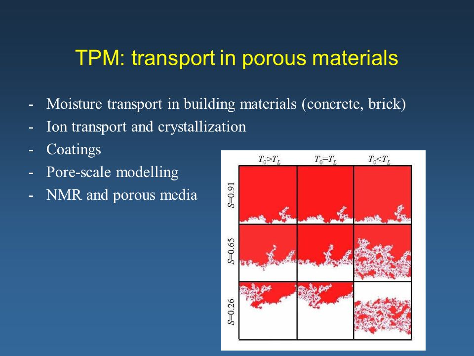 TPM: transport in porous materials -Moisture transport in building materials (concrete, brick) -Ion transport and crystallization -Coatings -Pore-scal
