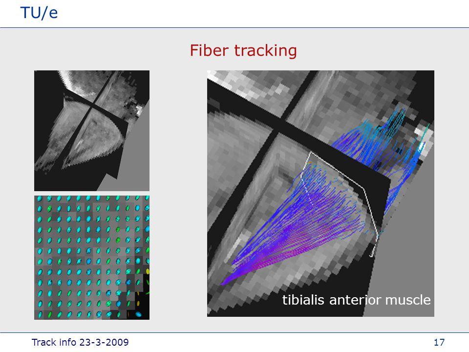 Track info 23-3-2009 TU/e 17 Fiber tracking tibialis anterior muscle