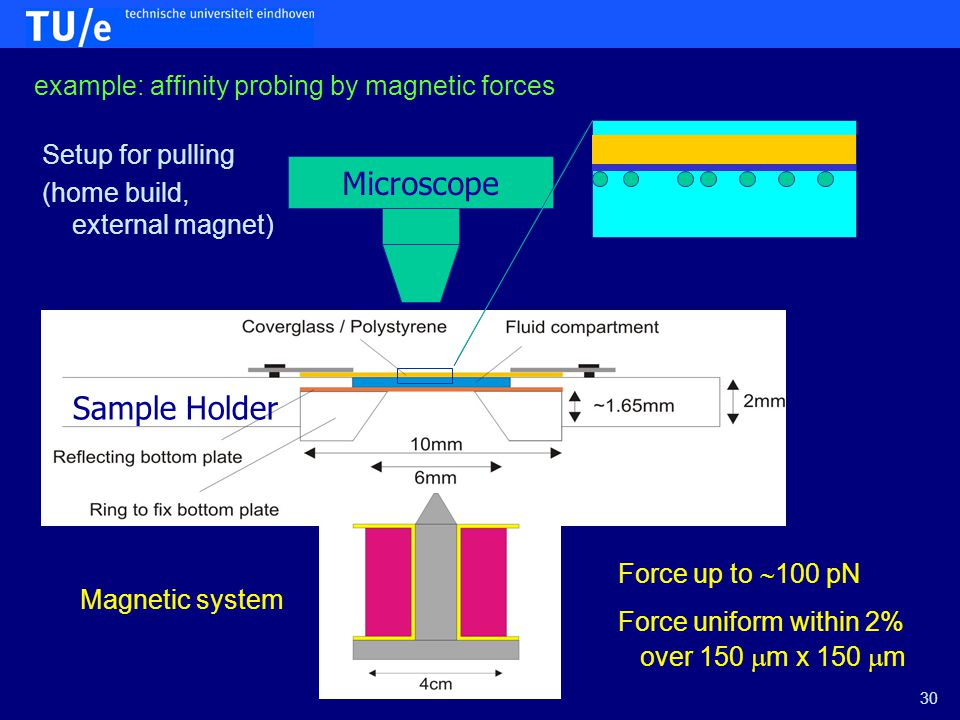 Microscope Magnetic system Sample Holder Force up to  100 pN Force uniform within 2% over 150  m x 150  m Setup for pulling (home build, external magnet) 30 example: affinity probing by magnetic forces