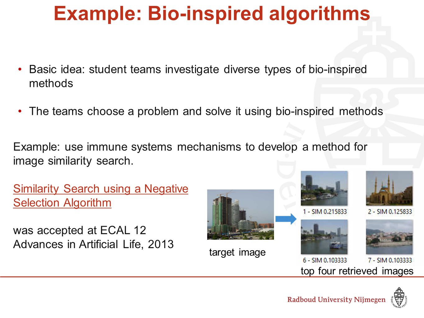 Example: Bio-inspired algorithms Basic idea: student teams investigate diverse types of bio-inspired methods The teams choose a problem and solve it using bio-inspired methods Example: use immune systems mechanisms to develop a method for image similarity search.