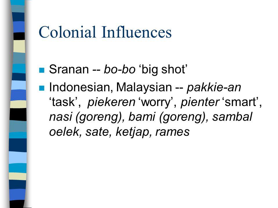 Colonial Influences n Sranan -- bo-bo 'big shot' n Indonesian, Malaysian -- pakkie-an 'task', piekeren 'worry', pienter 'smart', nasi (goreng), bami (goreng), sambal oelek, sate, ketjap, rames