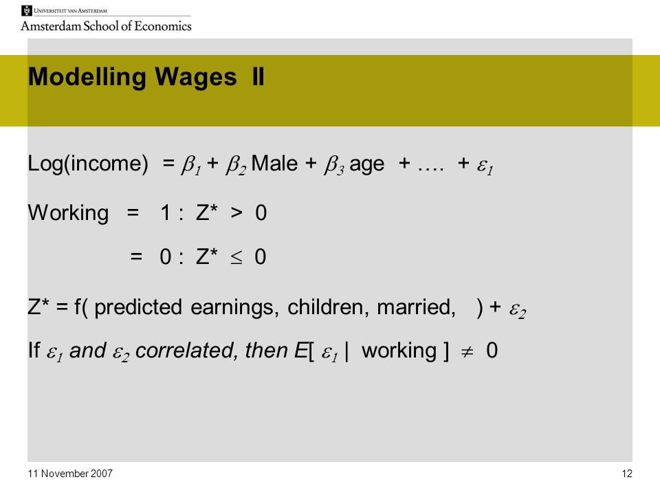 11 November 2007 12 Modelling Wages II Log(income) =   +   Male +   age + …. +   Working = 1 : Z* > 0 =0 : Z*  0 Z* = f( predicted earnings,