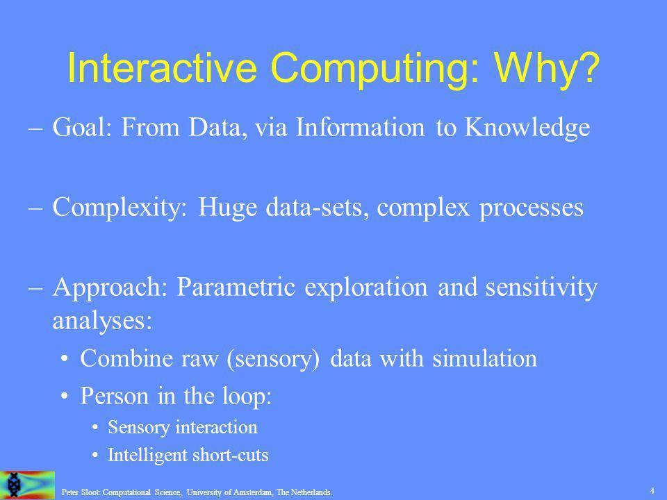 15 Peter Sloot: Computational Science, University of Amsterdam, The Netherlands.
