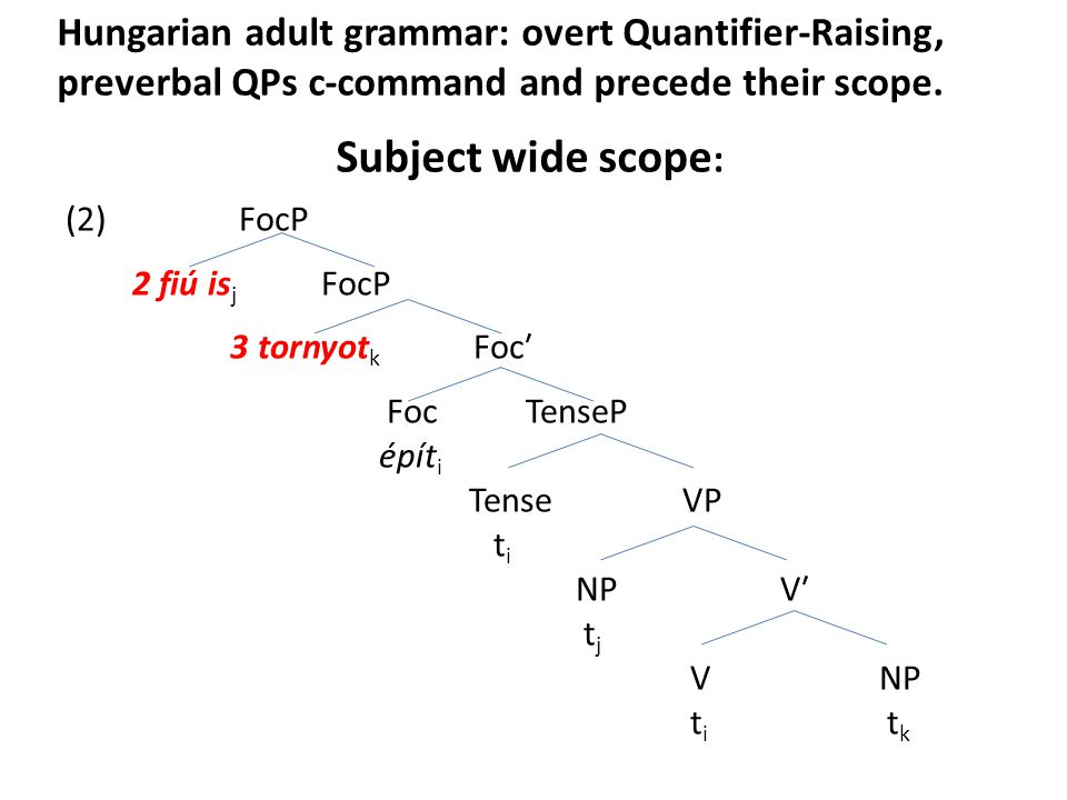 Hungarian adult grammar: overt Quantifier-Raising, preverbal QPs c-command and precede their scope.