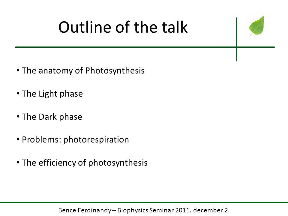 Bence Ferdinandy – Biophysics Seminar 2011. december 2. Photosystem II Quite a beauty if ya ask me.