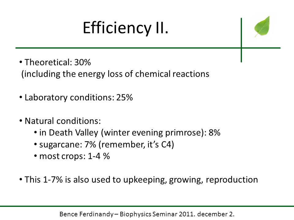 Bence Ferdinandy – Biophysics Seminar 2011. december 2. Efficiency II. Theoretical: 30% (including the energy loss of chemical reactions Laboratory co