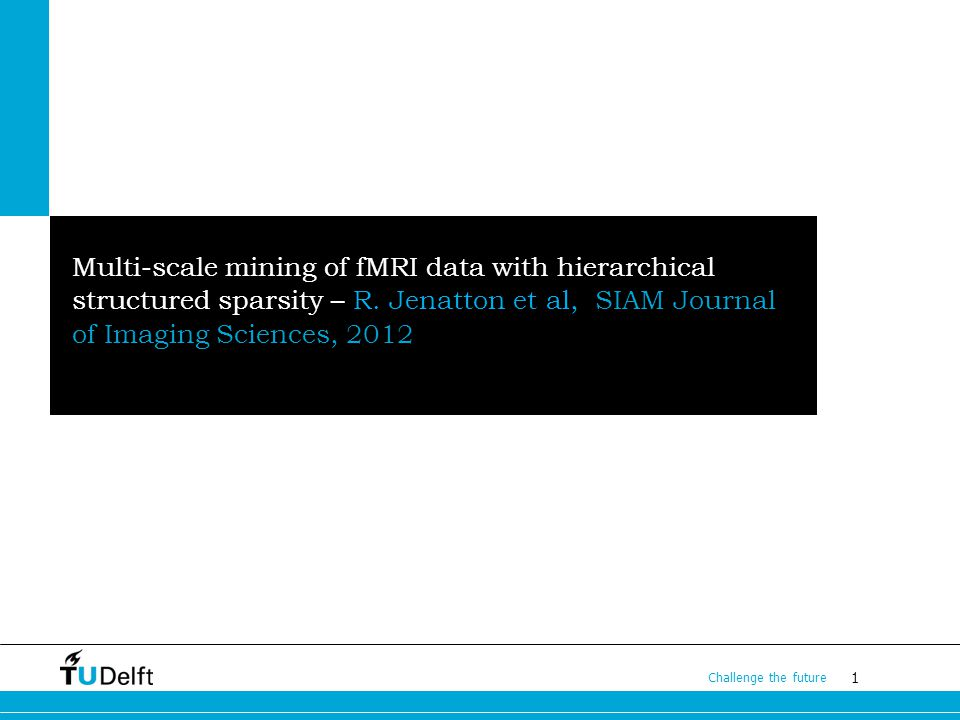 1 Challenge the future Multi-scale mining of fMRI data with hierarchical structured sparsity – R.