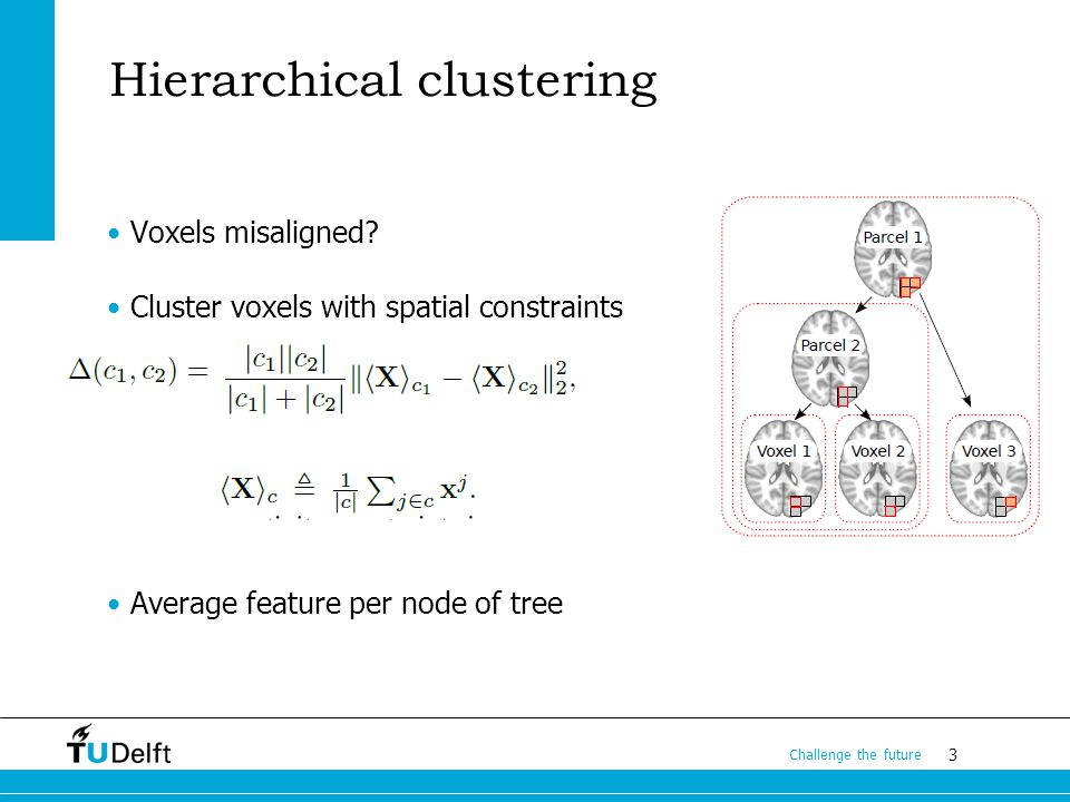 3 Challenge the future Hierarchical clustering Voxels misaligned.
