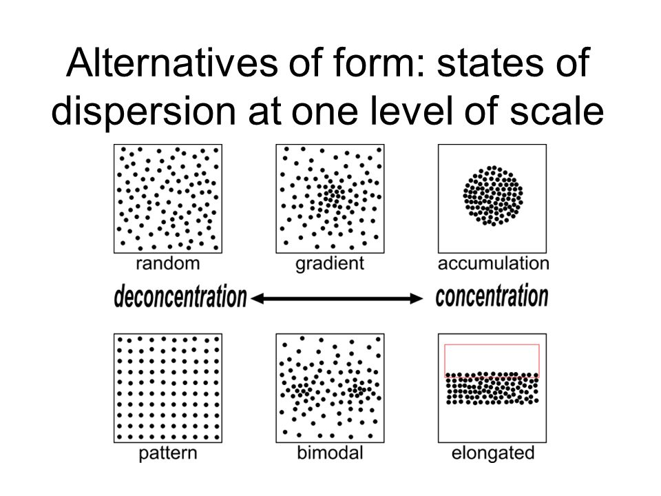 Alternatives of form: states of dispersion at one level of scale