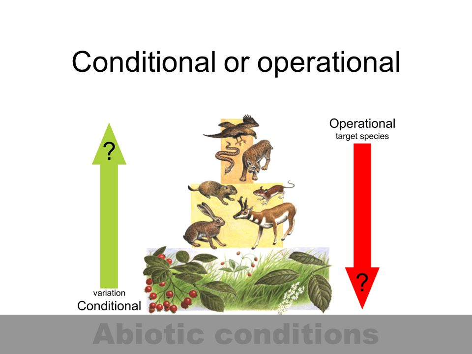 Conditional or operational Abiotic conditions