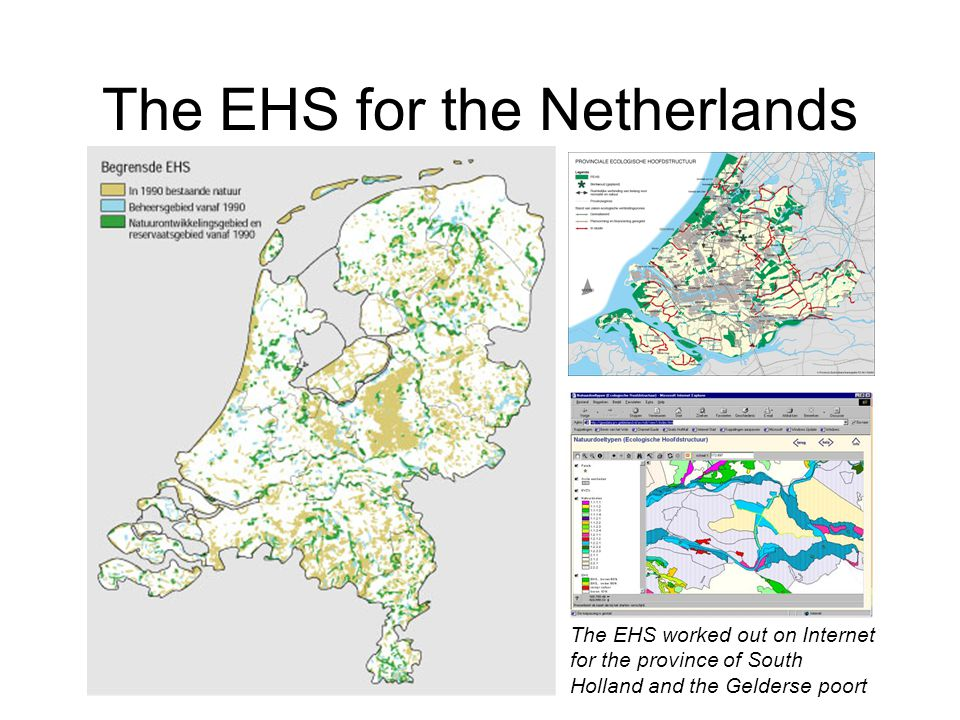 The EHS for the Netherlands The EHS worked out on Internet for the province of South Holland and the Gelderse poort